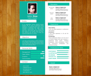 Single Slide Resume Template for PowerPoint