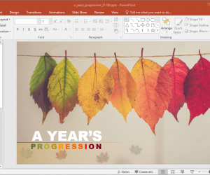 A Years Progression PowerPoint Template