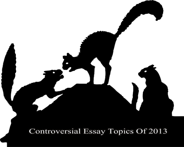Controversial issues essay