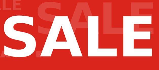 Persuasive Sales Speech