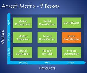 9 Boxes Ansoff Matrix PowerPoint Template
