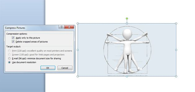 3D vitruvian compress picture