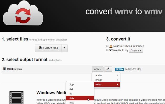 convert WMV to MKV
