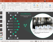 Interactive DNA Template for PowerPoint
